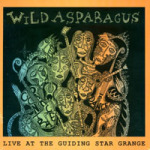 Live at the Guiding Grange album cover